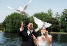 Tauben_fuer_Hochzeit